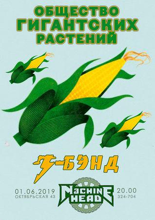 «Общество гигантских растений» / «З-бэнд»