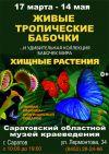 Выставка бабочек и хищных растений в Саратове